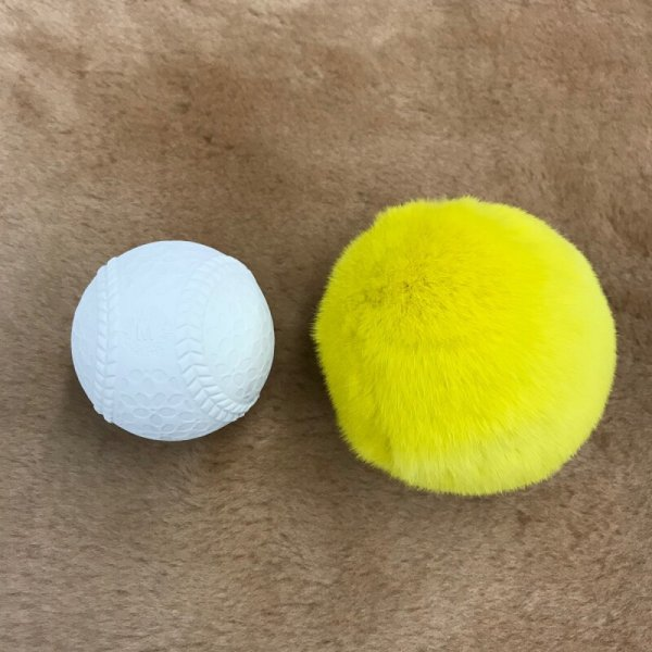 画像2: レッキス毛皮ボール室内用